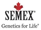 Semex