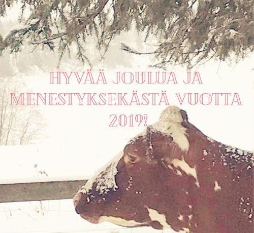 Jouluinen tervehdys teille lehmälliset jäsenemme ja yhteistyökumppanimme!