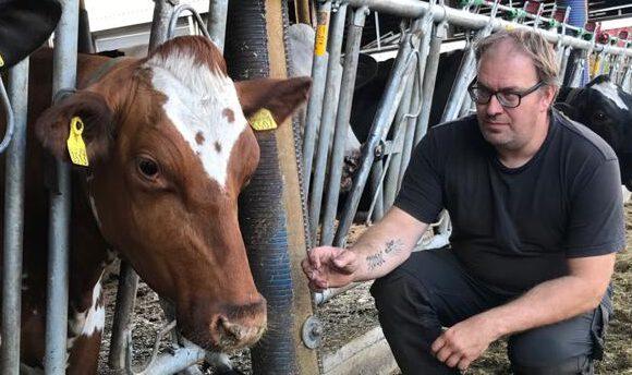 Mikael Åsvik: Mietteitä maidontuotannon sopeutumistarpeista